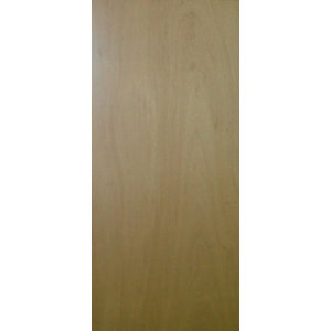 External Door Blank Fire Door 30 min 44 x 2440 x 1220