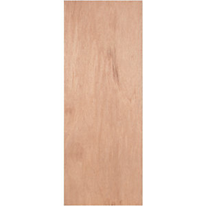 Internal Ply Flush Door