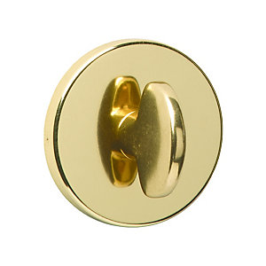Urfic Escutcheon Polished Brass WC Profile